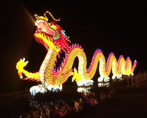 dragon, awesome, hot, fire, orange, decoration, curvy